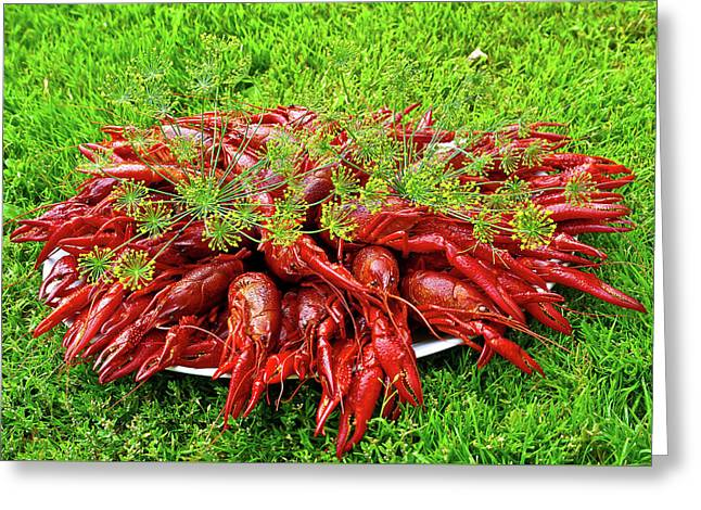 Cooked Crayfish With Dill Greeting Card by Jarmo Honkanen