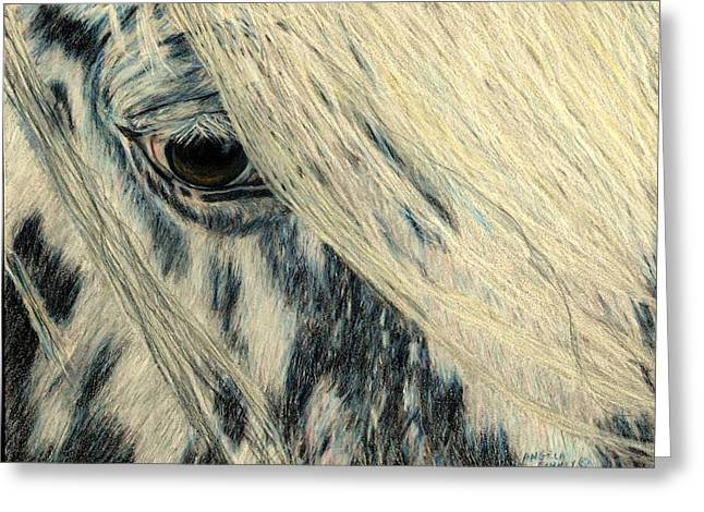 Cookie's Eye Greeting Card by Angela Finney