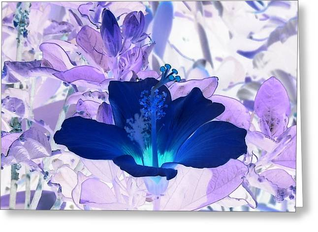 Cool Blue Hawaiian Hibiscus Greeting Card