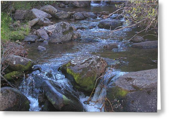 Greeting Card featuring the photograph Cool Creek by Tammy Sutherland