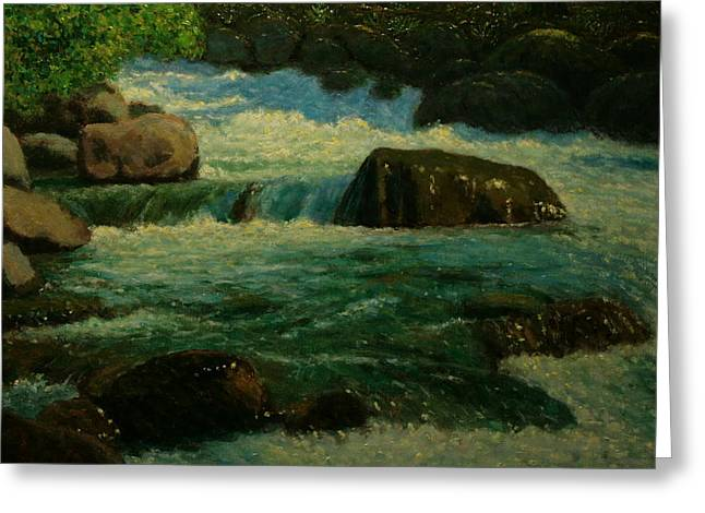 Cool Mountain Water Greeting Card by Terry Perham
