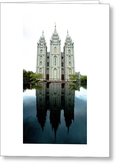 Cool Reflection Greeting Card by Sheila Madine