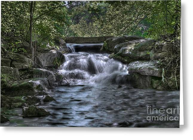Cooling Waters  Greeting Card by Tamyra Ayles