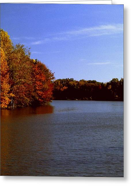 Indiana Autumn Greeting Cards - Coonhunters Lake Greeting Card by Gary Wonning