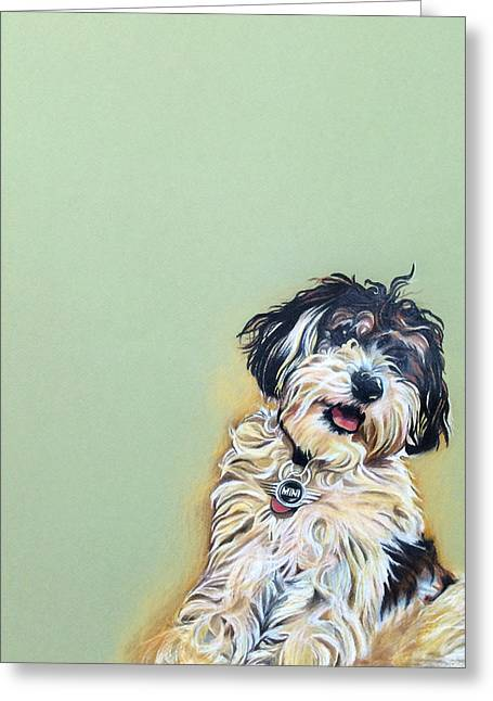 Cooper Greeting Card by Carol Meckling