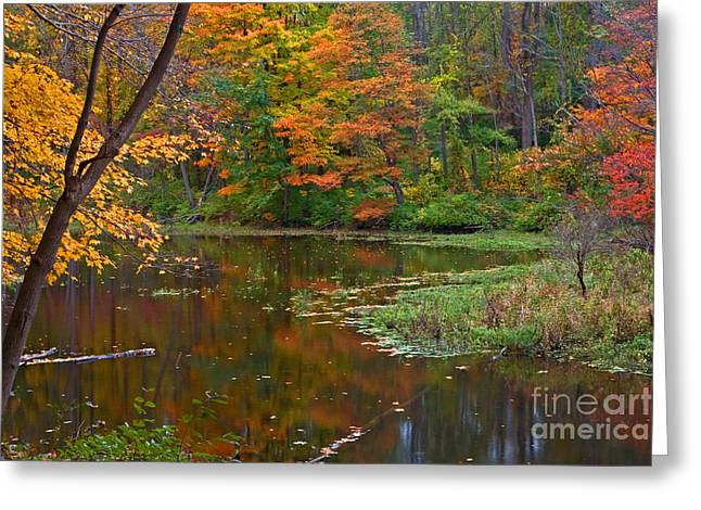 Cooper Mill Trail Greeting Card