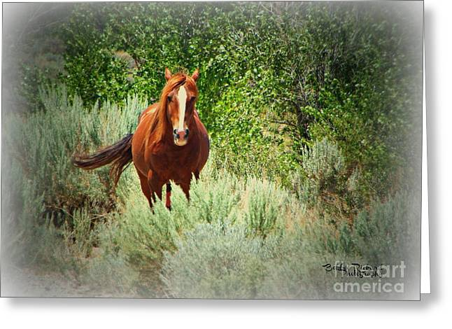 Copper Beauty Greeting Card by Bobbee Rickard
