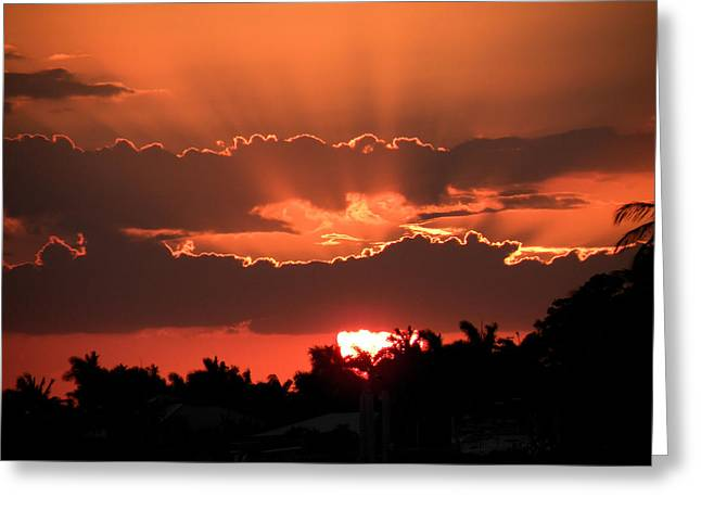 Copper Sunset Greeting Card by Rosalie Scanlon