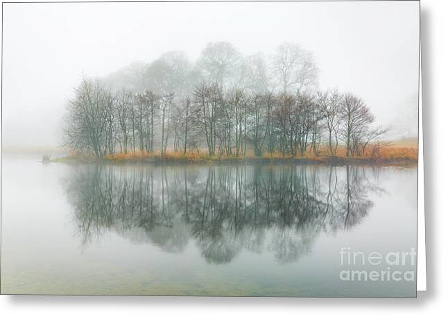 Copse Of Trees In The Mist Greeting Card