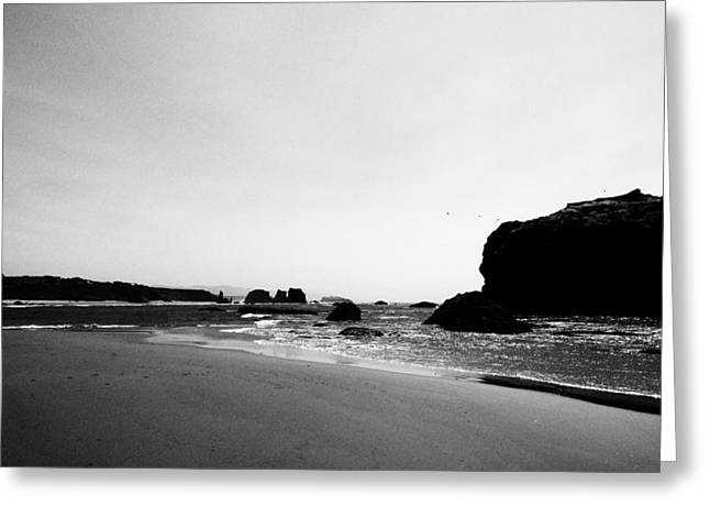 Coquille Point Greeting Card