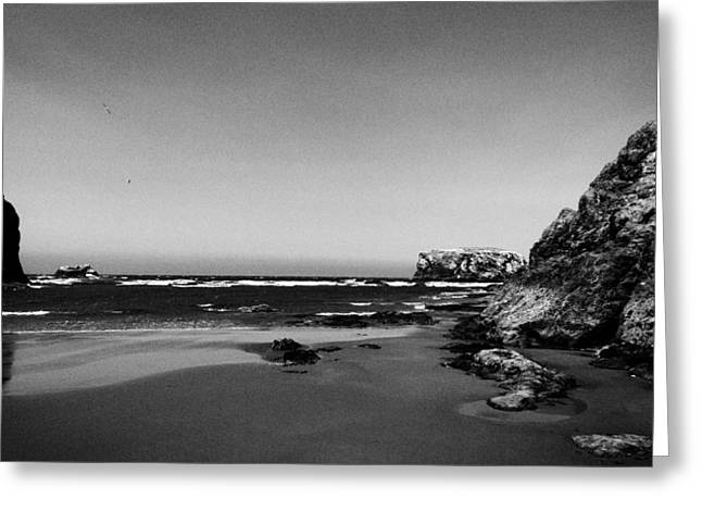 Coquille Point II Greeting Card