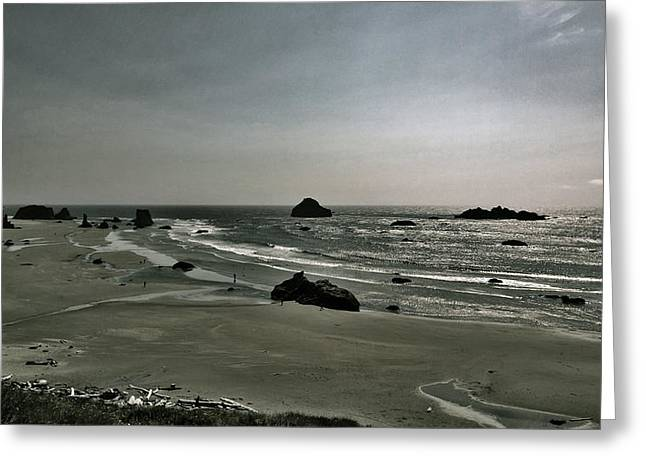 Coquille Point Iv Greeting Card