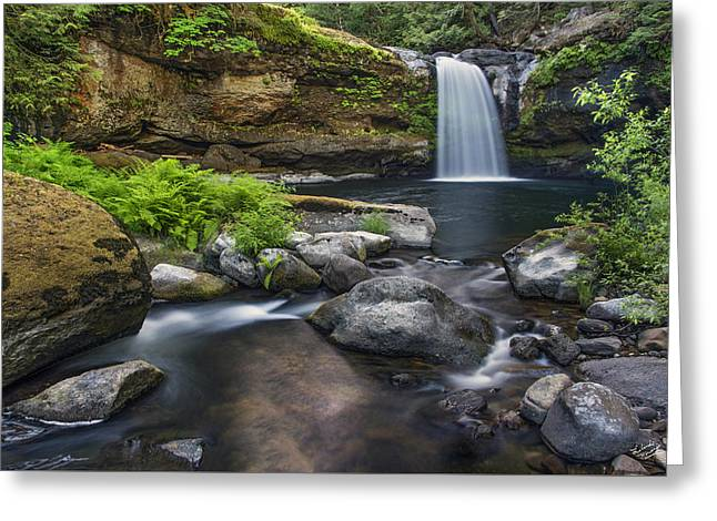 Coquille River Waterfall Greeting Card by Leland D Howard