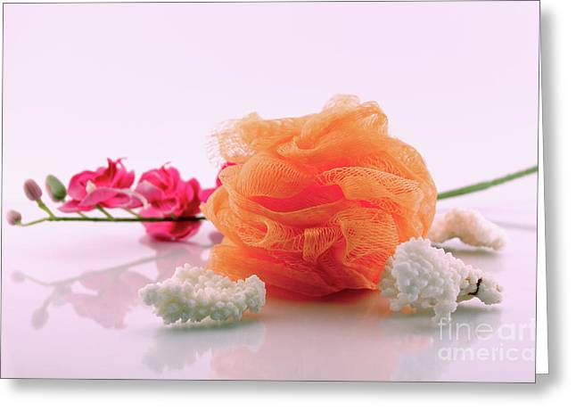 Coral And Sponge - Spa Concept Greeting Card