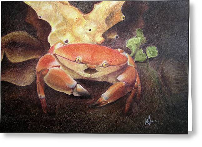 Coral Crab Greeting Card by Adam Johnson