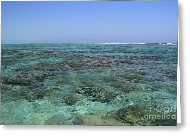 Greeting Card featuring the photograph Coral Reef And Breakers by Edward R Wisell