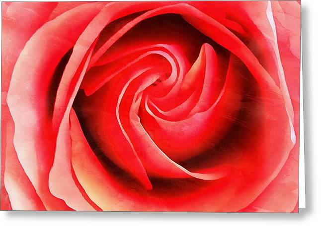 Coral Rose - My Pleasure - Rose Greeting Card by Janine Riley
