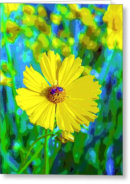 Coreopsis Flower And Bee Image Greeting Card by Paul Price
