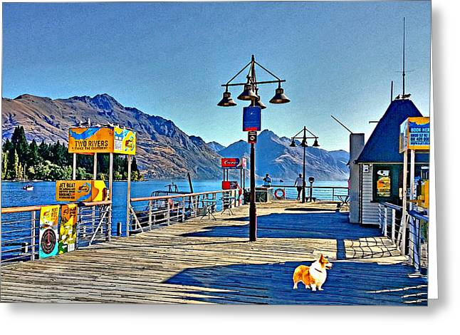 Greeting Card featuring the drawing Corgi At Queenstown New Zealand by Kathy Kelly