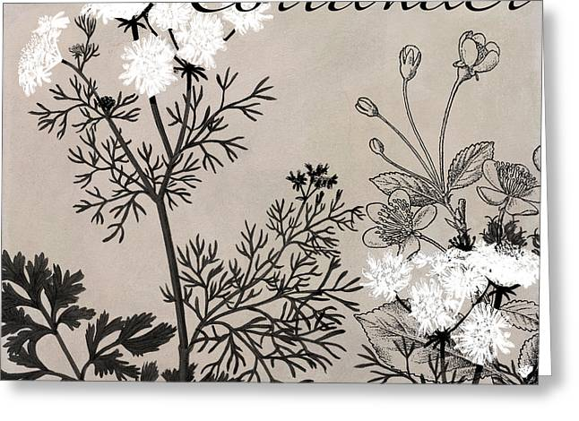 Coriander Flowering Herbs Greeting Card by Mindy Sommers
