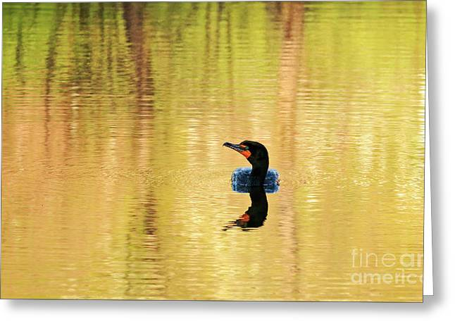 Cormorant With Reflections Greeting Card by Charline Xia