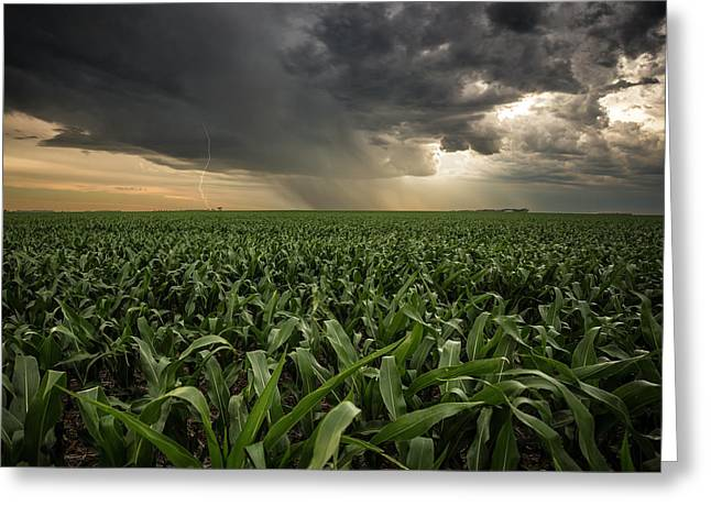 Greeting Card featuring the photograph Corn And Lightning by Aaron J Groen