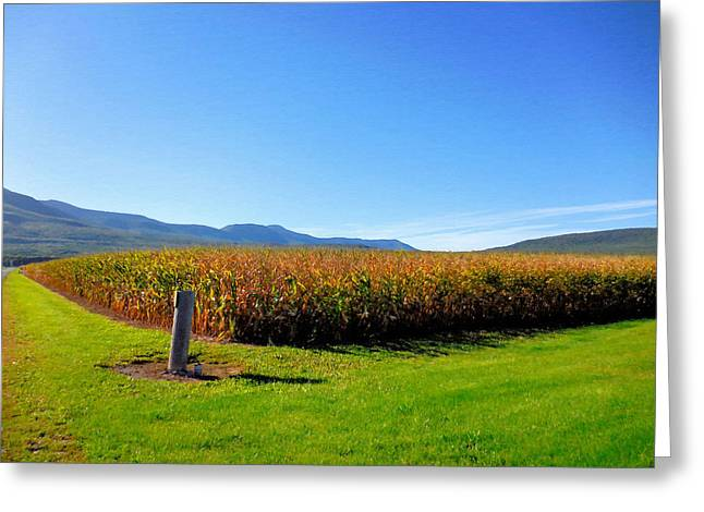 Corn Farm In Catskill 1 Greeting Card by Lanjee Chee