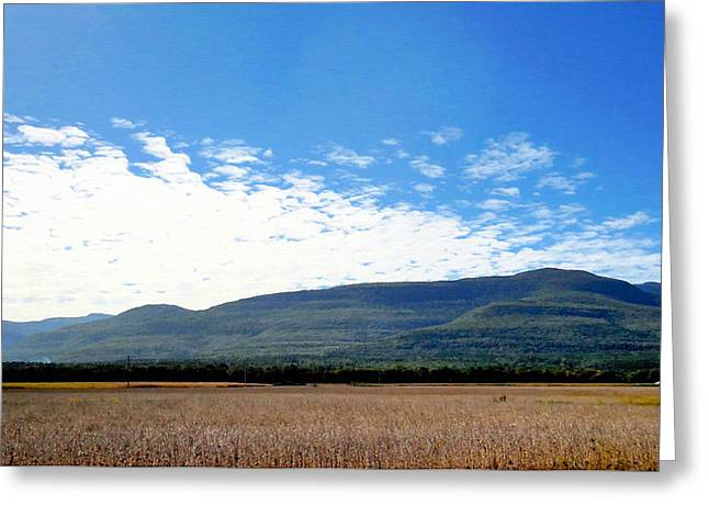 Corn Farm In Catskill 2 Greeting Card by Lanjee Chee
