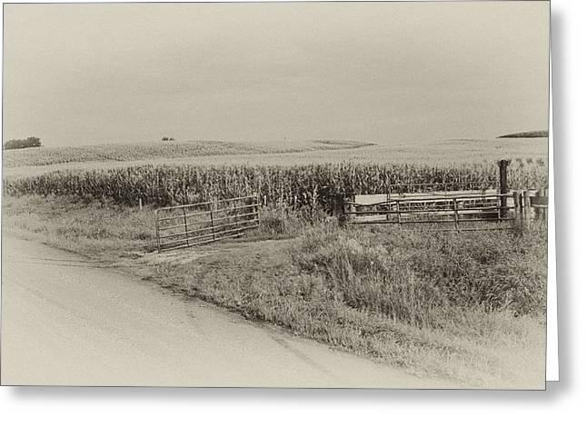 Corn Gate Rusty Greeting Card by Wilma  Birdwell