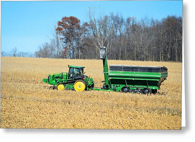 Corn Harvest Greeting Card