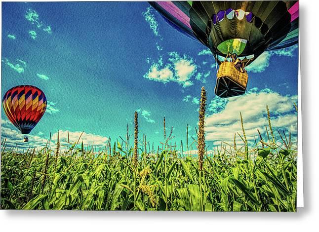 Cornfield View Hot Air Balloons Greeting Card by Bob Orsillo