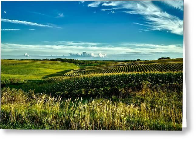 Cornfields Of Iowa Greeting Card