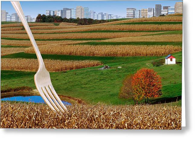 Cornfields With City Greeting Card