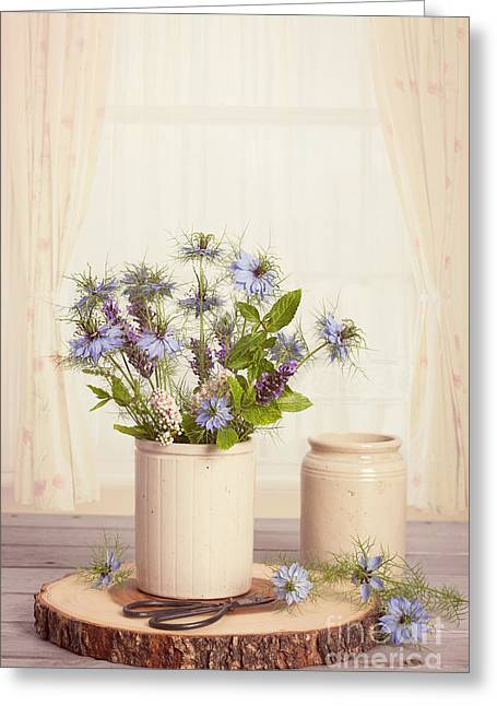 Cornflowers In Ceramic Pots Greeting Card by Amanda Elwell