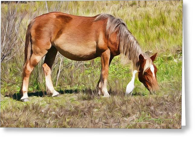 Corolla's Wild Horses Greeting Card