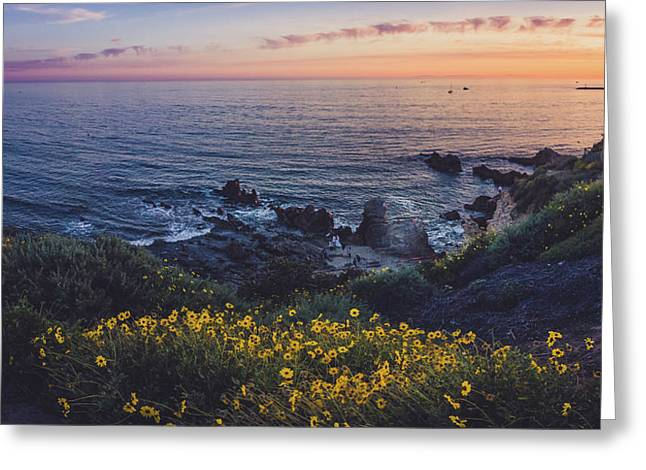 Corona Del Mar Super Bloom Greeting Card