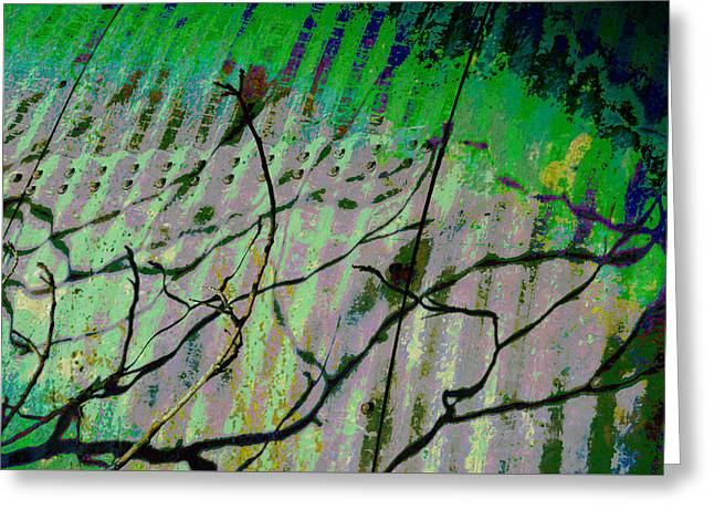 Corregated Shadows Greeting Card by Jan Amiss Photography