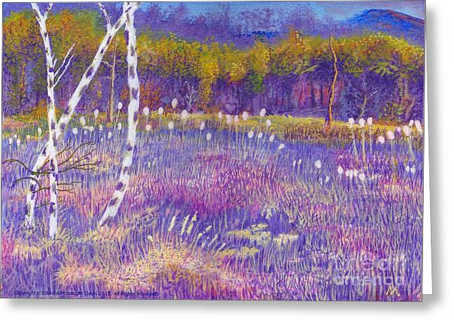 Cors Caron Bulrushes With Purple Grasses Greeting Card