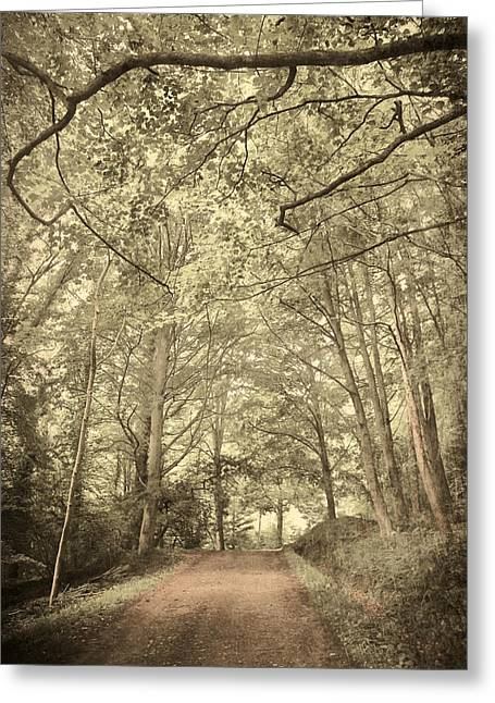 Cosy Path Greeting Card by Svetlana Sewell