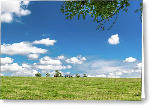 Cotswolds Pastoral Greeting Card