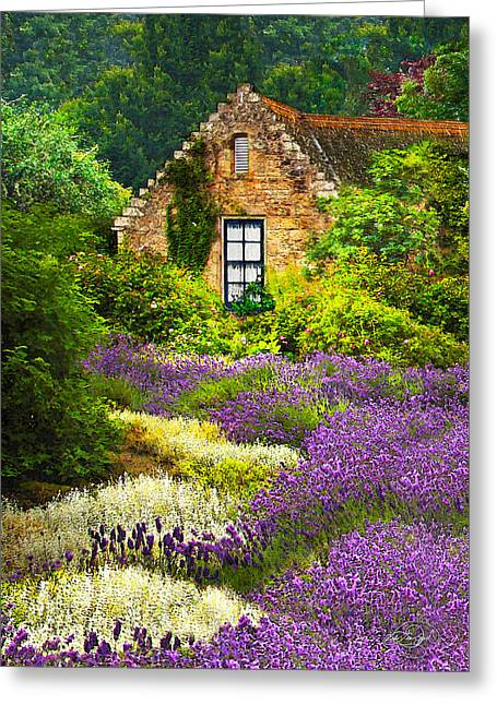 Cottage Amidst The Lavender Greeting Card