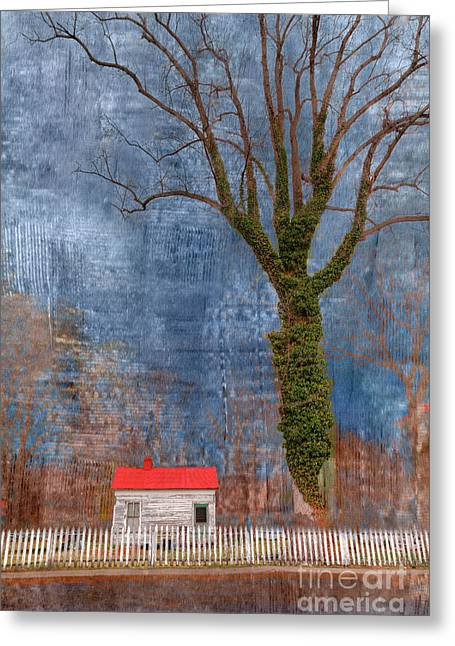 Cottage With Red Roof Greeting Card by Larry Braun