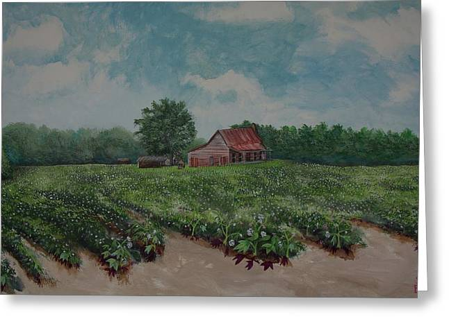 Cotton Be Gone Greeting Card