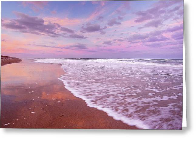 Cotton Candy Sunset. Greeting Card