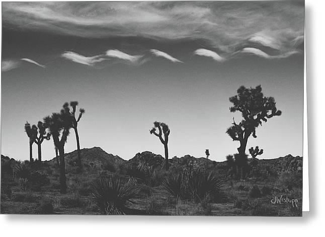 Cotton Sky On Joshua Trees Greeting Card by Joseph Westrupp