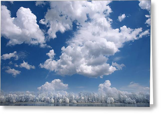 Cotton Sky Greeting Card
