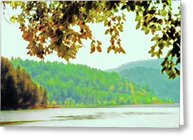 Couer D' Alene Lake 1 Greeting Card by Steve Ohlsen