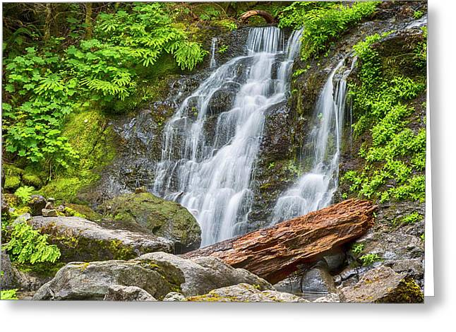 Cougar Falls - Mount Rainier National Park Greeting Card by Stephen Stookey