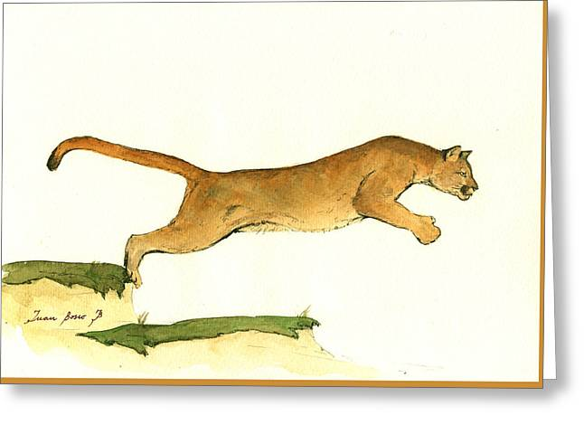 Cougar Greeting Card by Juan Bosco