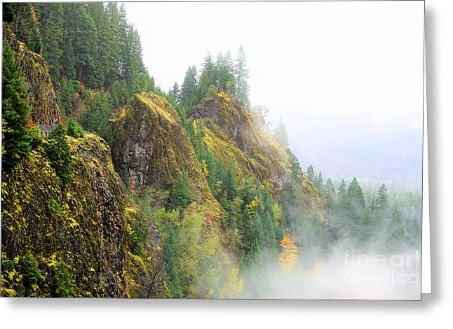 Cougar Reservoir Area Greeting Card